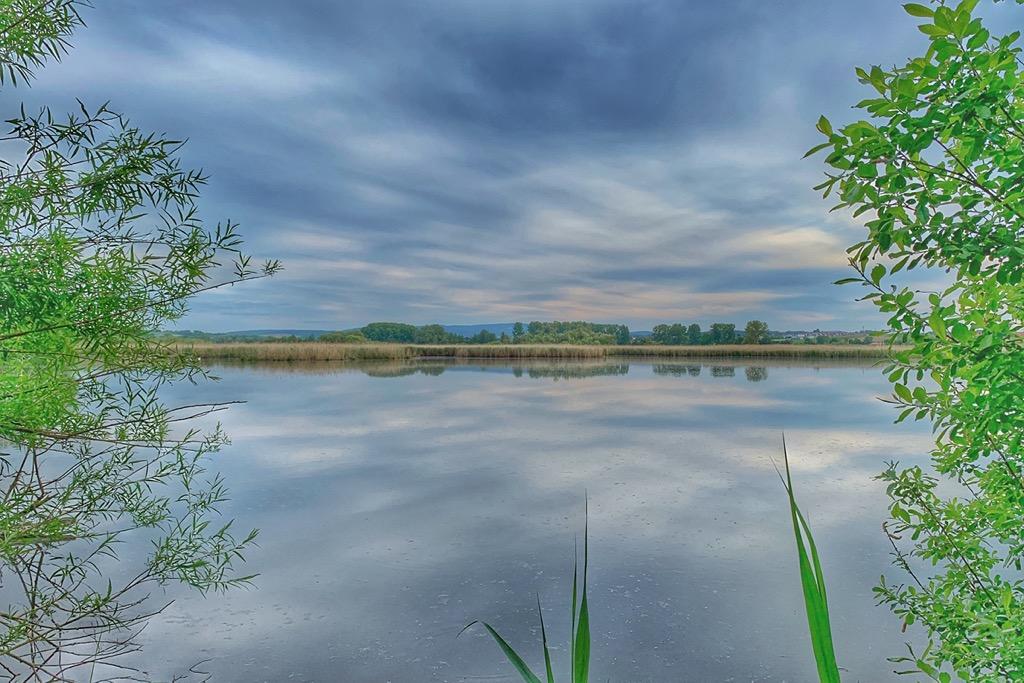 Reinheim Teich
